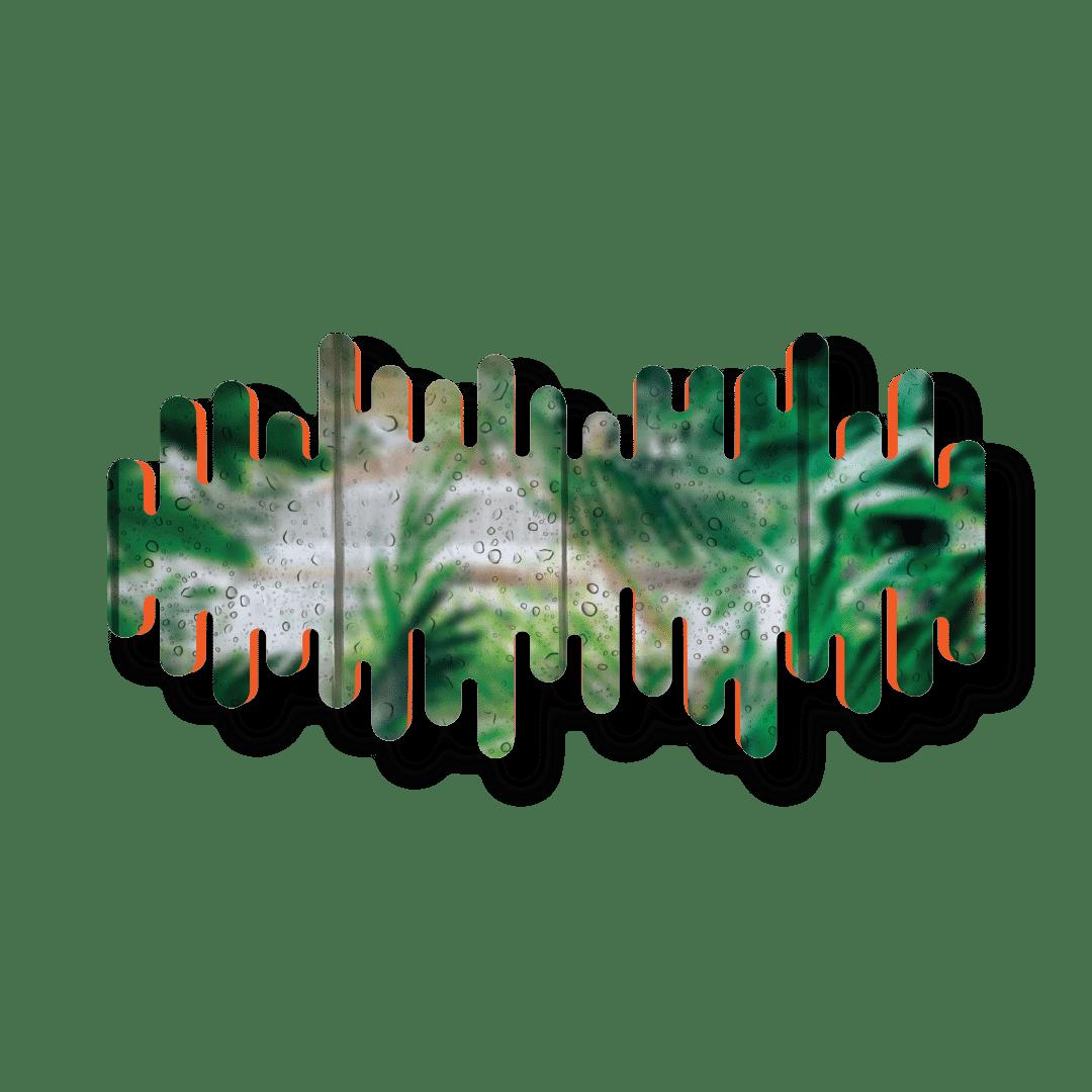 "DRIP'IN studio lithographie ""Head in the Jungle"" de GTHVN"